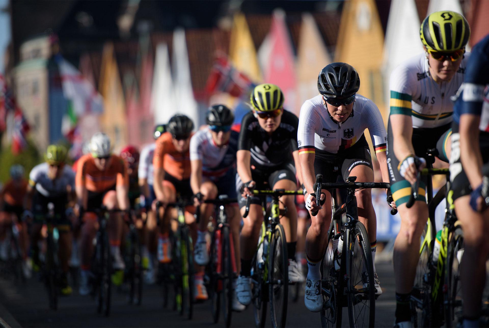 The Cyclists' Alliance   Copyright Velofocus