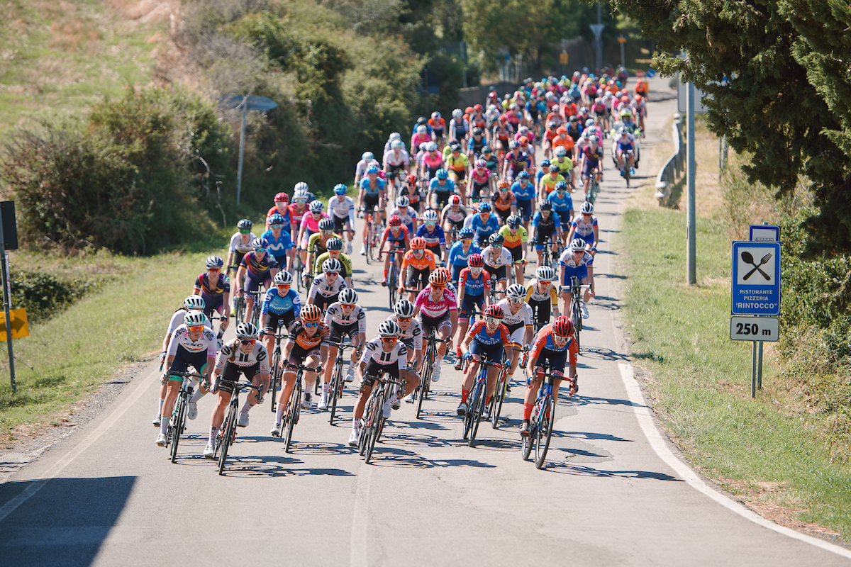 Professional female cyclists in a peloton